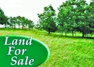 Lot 75  Tamarac Estates Jackson MO, 63755