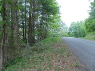 Tbd Pineview Road Dugspur VA, 24325