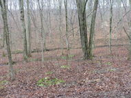 Lot #2 Spring Creek Road Three Springs PA, 17264