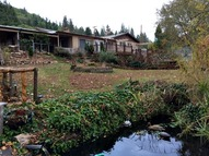 2944 Canyonville-Riddle Rd Riddle OR, 97469