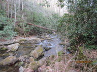 000 Newberry Creek Road Old Fort NC, 28762