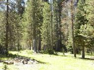 Grizzly Road Bass Lake CA, 93604
