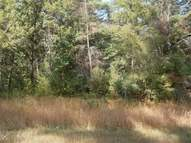 Lot 10 Gale Ct Wisconsin Dells WI, 53965