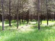 Mcginnis Meadows Road (Lot 3b) Libby MT, 59923