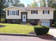 237 Mountain View Drive Nanticoke PA, 18634