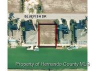 0 Bluefish Dr Hernando Beach FL, 34607
