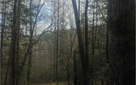 Lot16 Idle Lane Lot 16 Blue Ridge GA, 30513