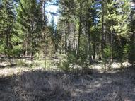 Lot 19 Swede Mountain Rd Libby MT, 59923