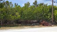 Vacant Rose Drive Big Pine Key FL, 33043