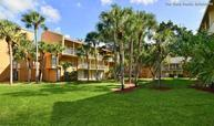 The Palms at Forest Hills Apartments Coral Springs FL, 33065