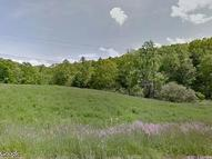 Address Not Disclosed Green Mountain NC, 28740