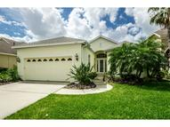 9603 Greenpointe Dr Tampa FL, 33626
