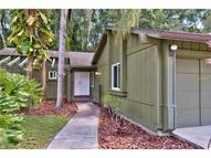23971 Forest View Drive Land O Lakes FL, 34639