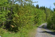 Lot # 7 Meadows & Mountains Road Whiting ME, 04691
