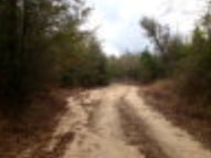 0 Hwy 43 North Poplarville MS, 39470