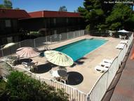 San Jose Manor Apartments Mesa AZ, 85202