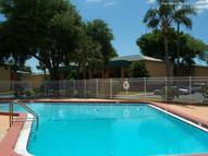 Buena Vista Apartments Seminole FL, 33772