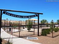 Encantada at Steam Pump Apartments Oro Valley AZ, 85737
