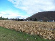 0 State Route 415 - Parcel 4 Savona NY, 14879