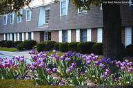 Miars Farm Apartments Chesapeake VA, 23321