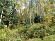 2076 Meadow Brook Drive Vail CO, 81657