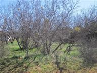 Lot 11 Rick Road Buffalo Gap TX, 79508