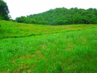 217 .60 Ac. Heavens Way Hilham TN, 38568