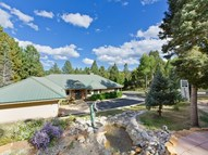 81 Pam Coleman Drive Angel Fire NM, 87710