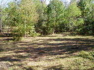 00 Clay Road Picayune MS, 39466