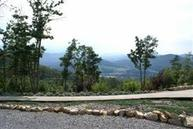 Lot 21 Lot 21 Eagle Mountain Newport TN, 37821