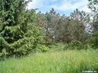 Lot 9 Madelyns Way Rush NY, 14543