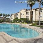 IMT Boot Ranch Apartments Palm Harbor FL, 34685