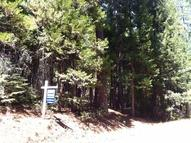5373 Wooded Glen Road Grizzly Flats CA, 95636
