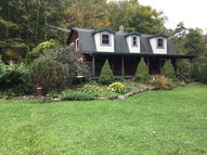 2066 Tower Hill Road Millerton PA, 16936
