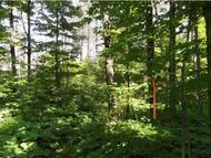 Lot 3 Therriault Hill Road Williamstown VT, 05679