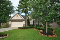 126 Springshed Pl Montgomery TX, 77316