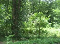 Lot 11 Quail Hollow Circle Dexter MO, 63841