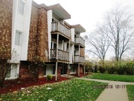 10542 Brooks Lane B3 Chicago Ridge IL, 60415