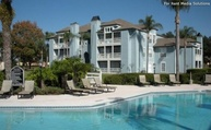 Park at Portofino, The Apartments Brandon FL, 33511