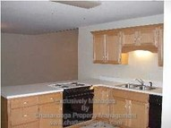 1343 Stratton Place Drive # 1343 Chattanooga TN, 37421