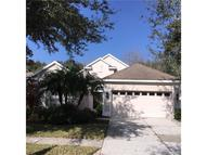 17926 Timber View  St Tampa FL, 33647