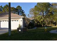 4503 Connery  Ct Palm Harbor FL, 34685