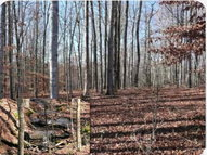 40 Acres Upper Hilham Rd Hilham TN, 38568
