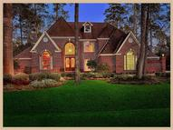 66 Firefall Ct The Woodlands TX, 77380
