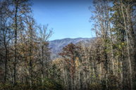 64 J Mountain Harbour Andrews NC, 28901