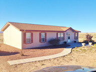 106 Gopher Gulch Loop Carrizozo NM, 88301