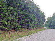 145 Racoon Trail Spencer TN, 38585