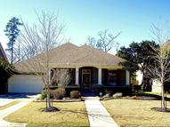 15 Mews Wood Ct The Woodlands TX, 77381