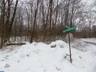 Lot 48 Blue Mountain Dr New Ringgold PA, 17960