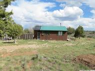 1981 S Madhatter Way Fruitland UT, 84027